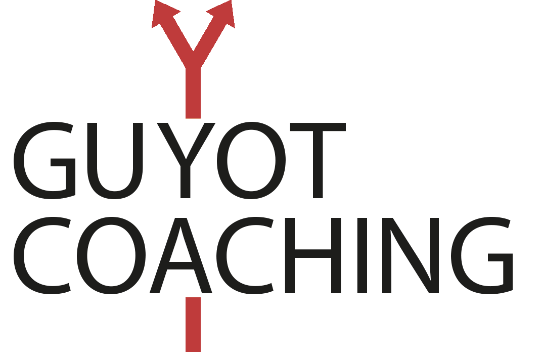 Guyot Karrierecoaching | Ihr Karriere-Coach aus Mannheim